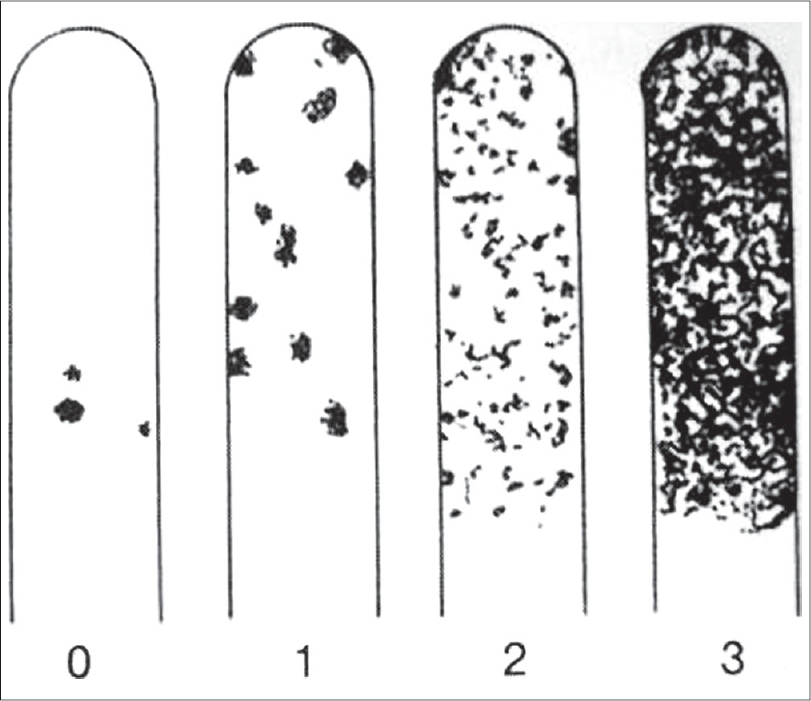 Figure 5: Manufacturer's chart showing different classes of