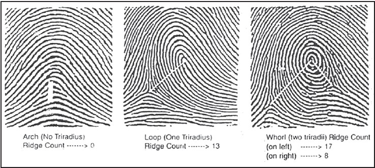 Figure 3: Three basic types of pattern and their counting