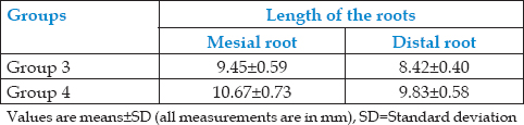 Table 4: The mean length of roots of primary mandibular first molars (Group 3) and mandibular second molars (Group 4)