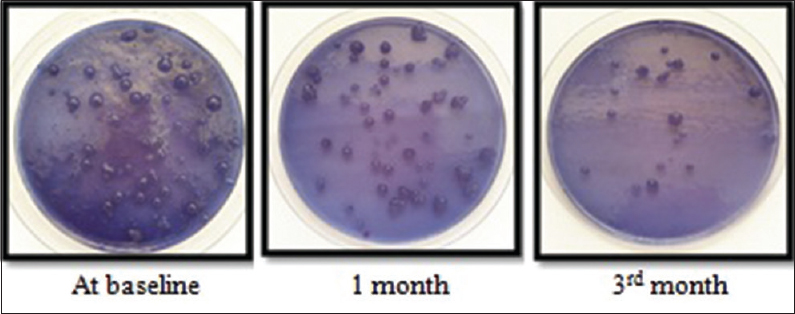 Figure 2: <i>Streptococcus mutans</i> colony on Mitis Salivarius agar base at baseline, 1<sup>st</sup> month, and 3<sup>rd</sup> month