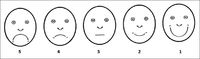 Figure 5: Facial Image Scale